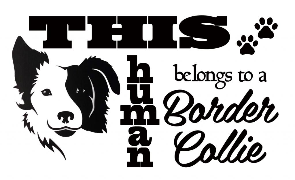 Collie Dog Flag Collie Dog Flag SVG Collie Dog Flag Dxf Collie Dog Flag SVG for Cricut Collie Dog Flag PNG Svg, Eps, Png, Dxf