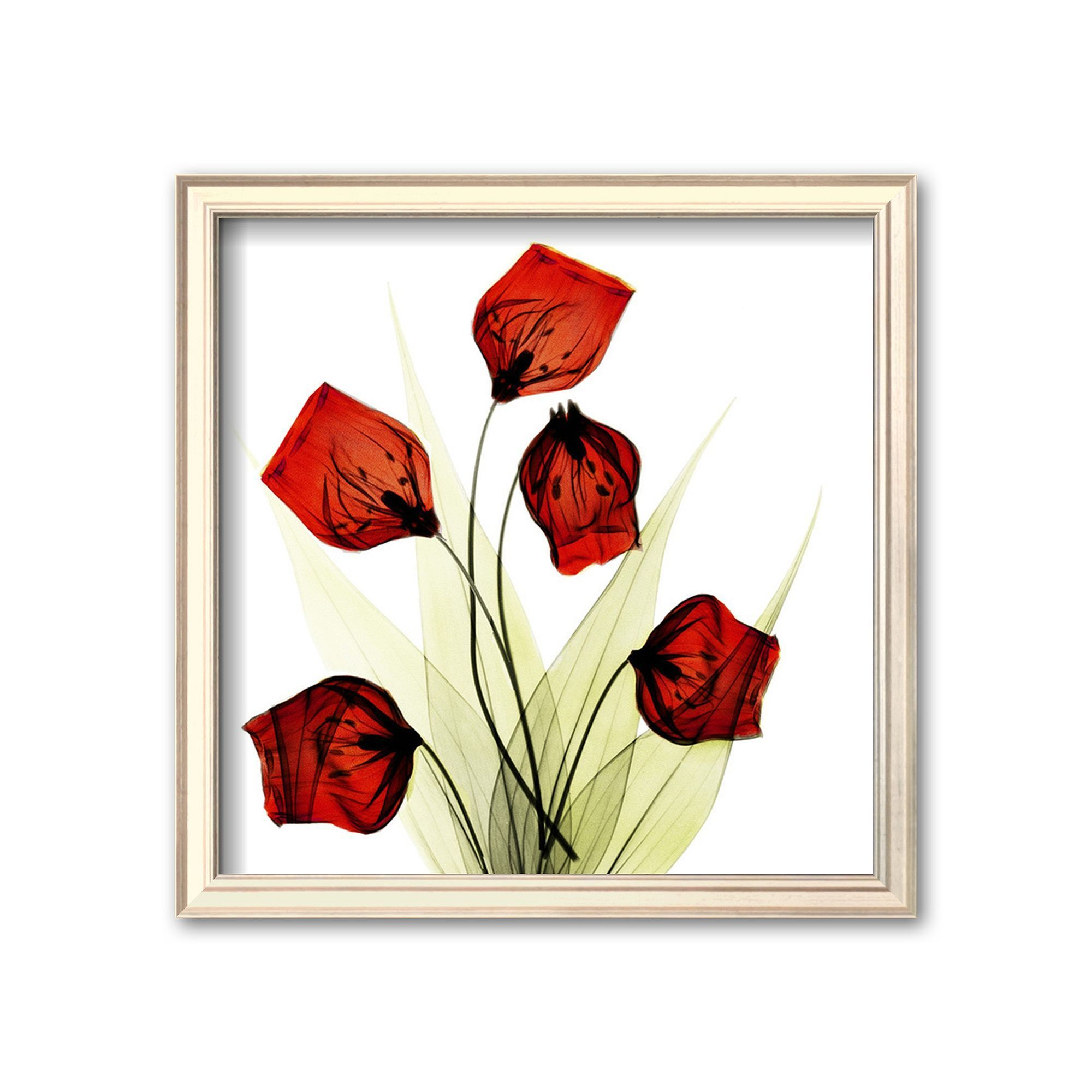 Art.com Sandersonia Bunch in Red Framed Art Print by Albert Koetsier ...