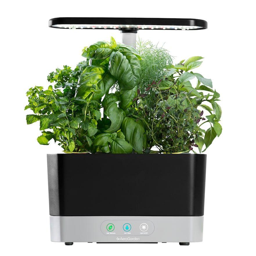 Aerogarden Harvest With Gourmet Herb Seed Pod Kit Kohls 640 x 480