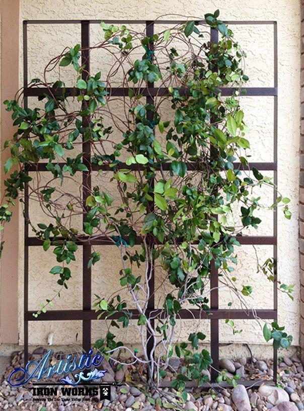 Trellises 6196 6205 Trellis Garden Trellis Wrought Iron Trellis