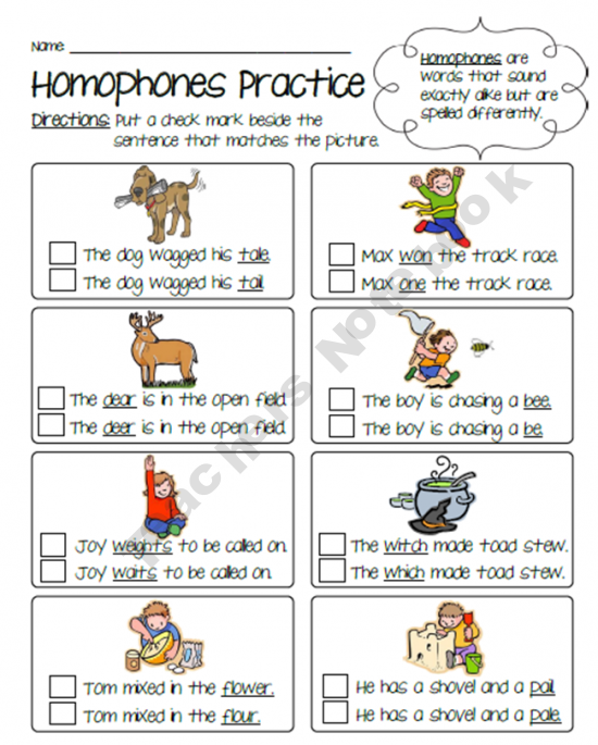 Homophones Practice Worksheet Language Word Study Exp Vocab