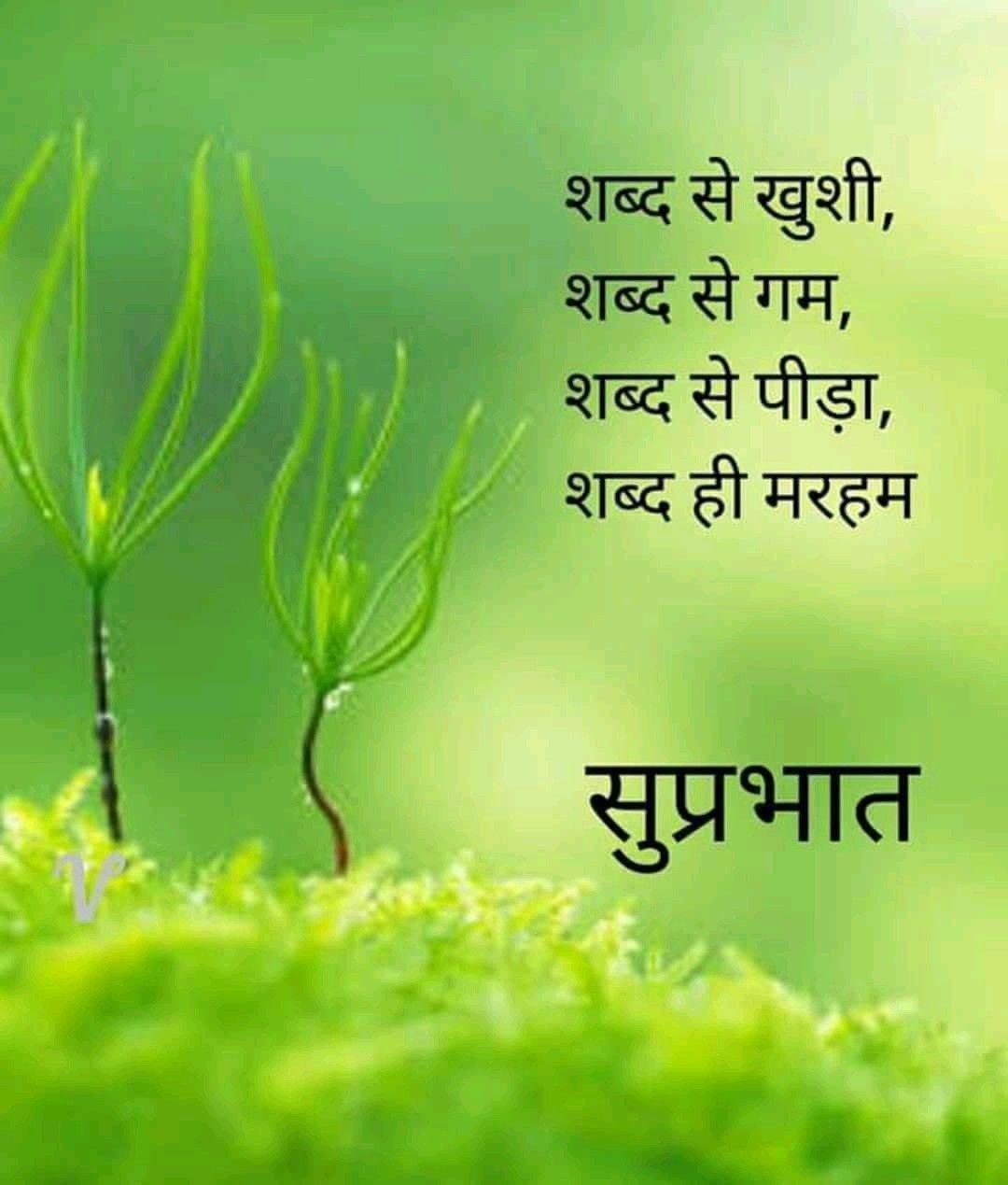 Good Morning In Hindi Quotes 1