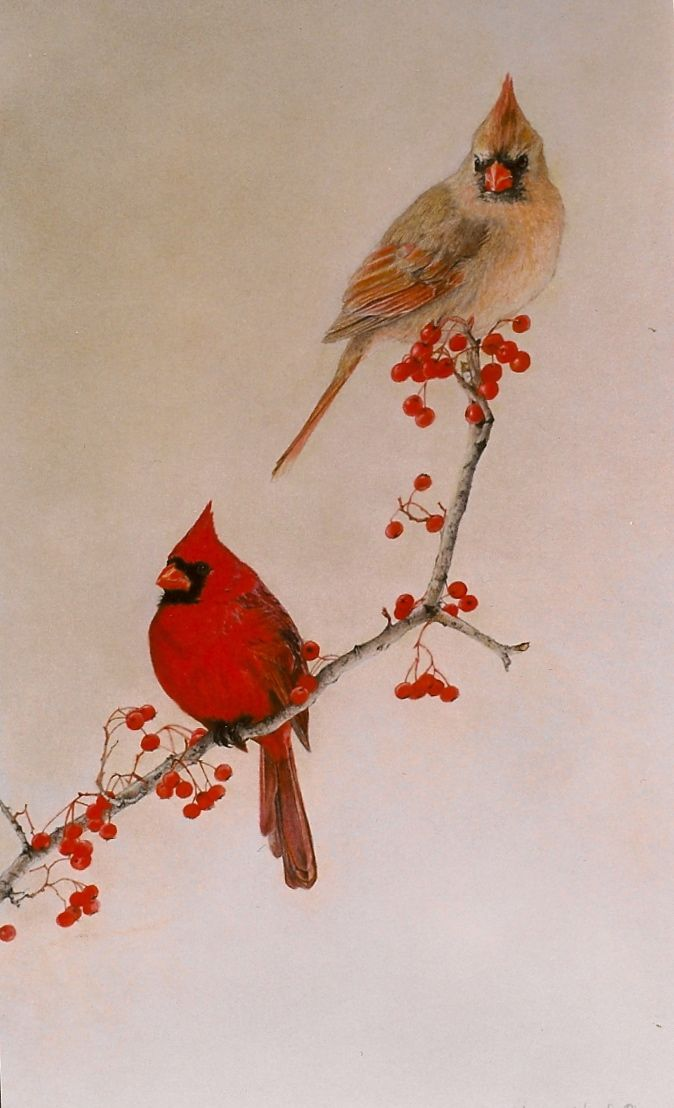 Cardinals Paintings Ideas Oh When To Do Pinterest