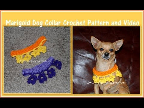 Crochet Dog Collar Youtube Crochet Dog Accessories Pinterest