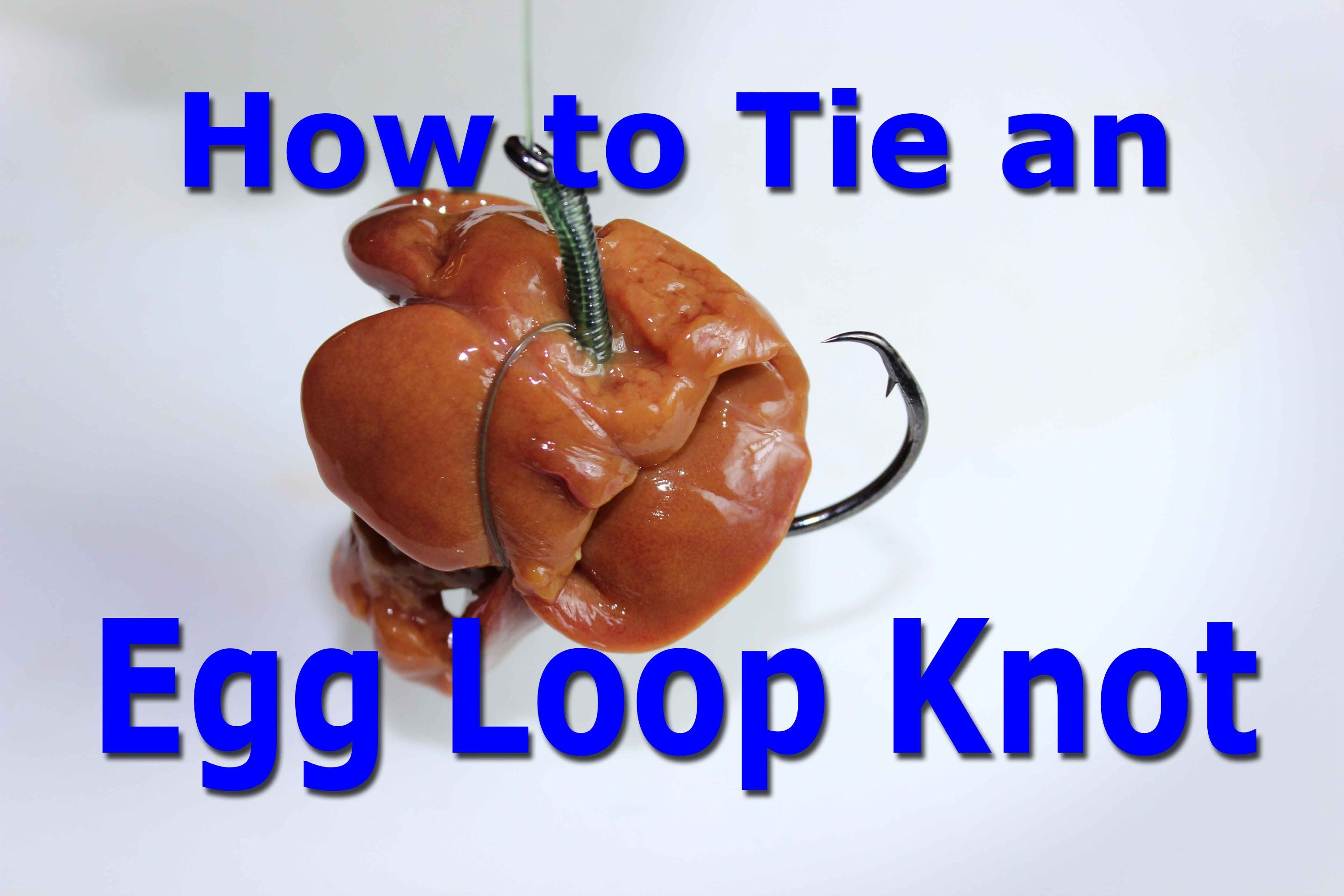 How to tie an egg loop knot keep chicken liver on the for How to make a fishing hook