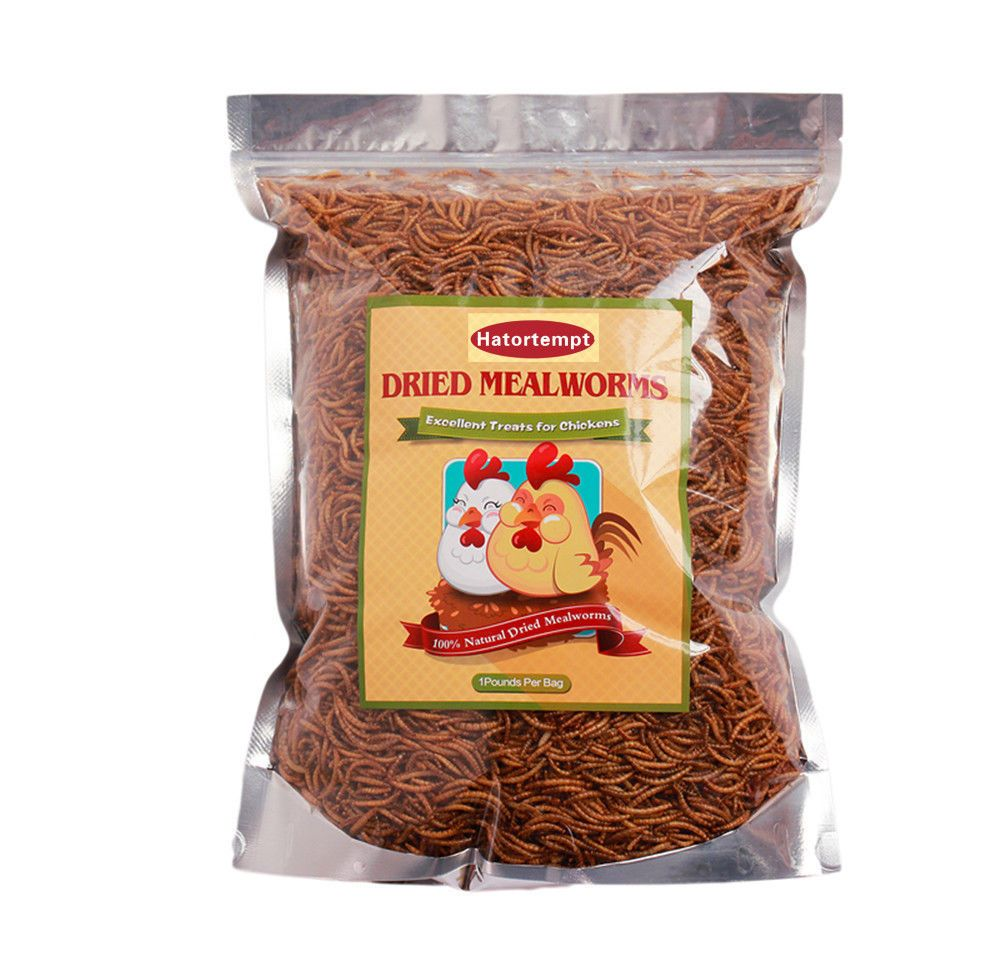 1LBS Dried Mealworms for Wild Birds Chickens Reptiles Fish and more