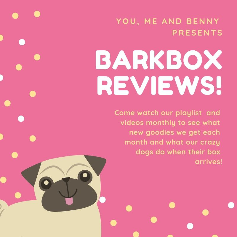 You Me And Benny S Playlist Of Their Barkbox Reviews They Ve Done What They Love And Don T Love And All The Dog Shenanigan Bark Box Barkbox Review Crazy Dog