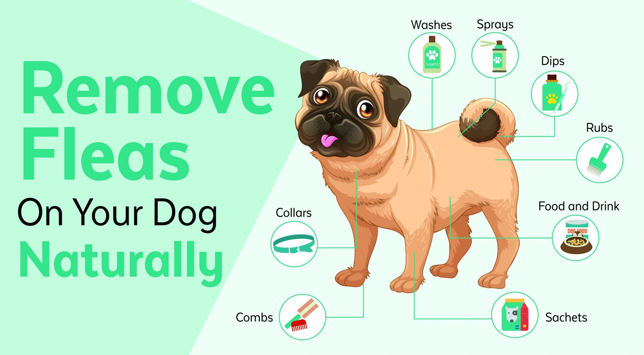 30 Ways To Naturally Prevent And Get Rid Of Fleas On Dogs Jet Pet Resort Pet Resort Fleas Dog Care