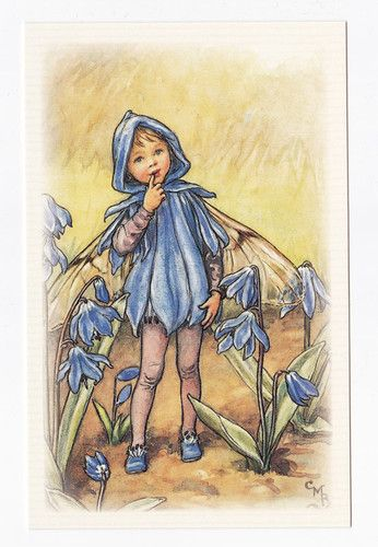 Postcard - The Scilla Fairy - Flower Fairies of Garden - Cicely Mary Barker | eBay