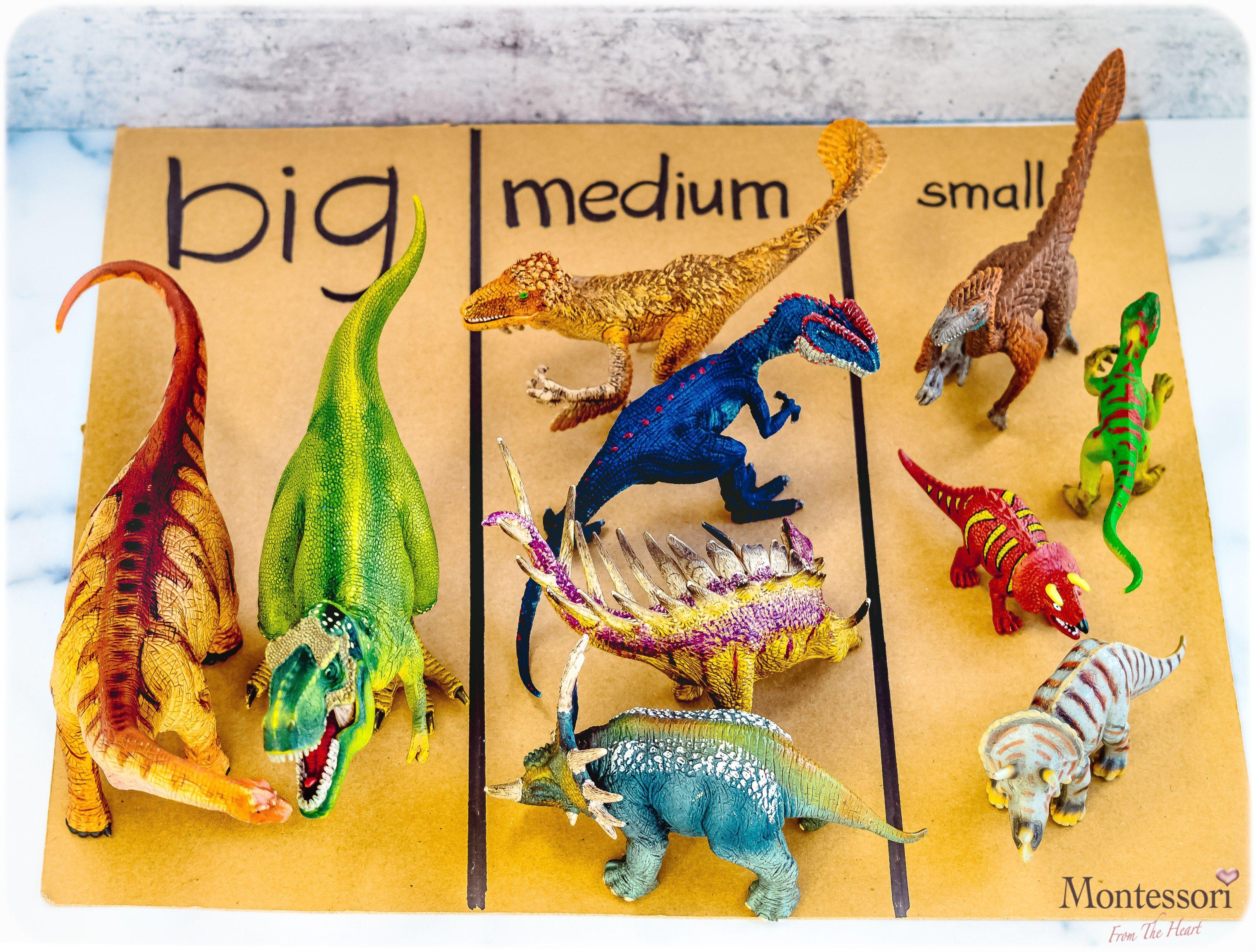 Dino Schleich Big Medium Small Sort Kids Activity