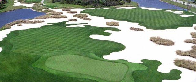 Image result for manatee county florida golfing