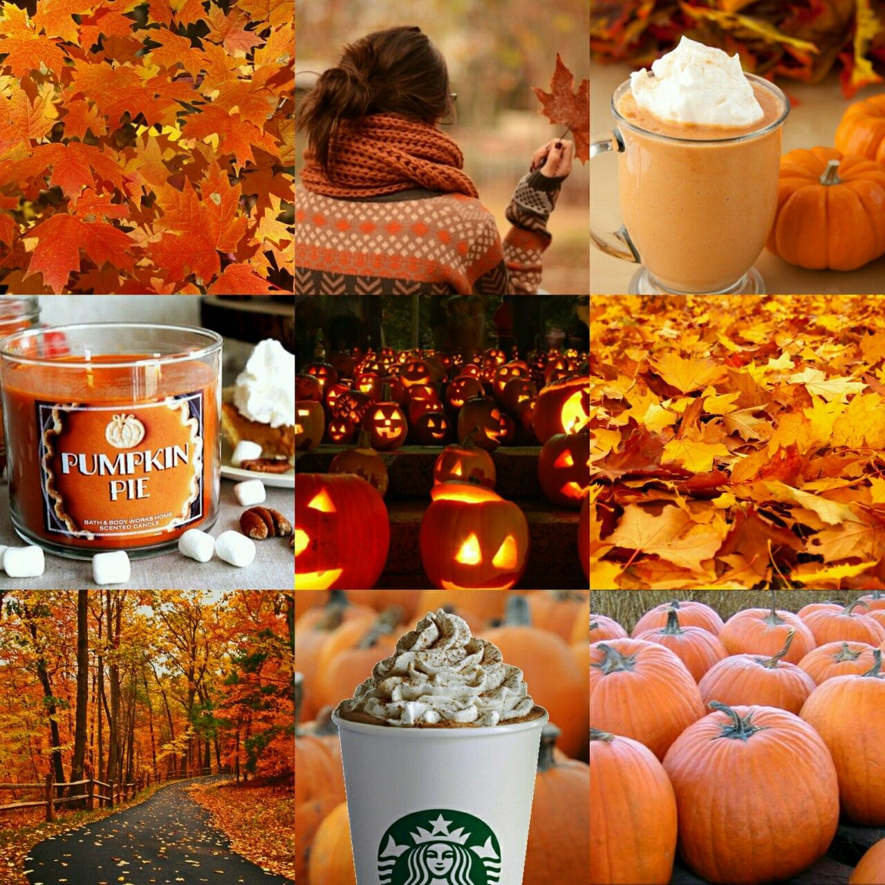 Autumn Aesthetic Tumblr Autumn Aesthetic Tumblr Autumn Aesthetic Autumn Inspiration