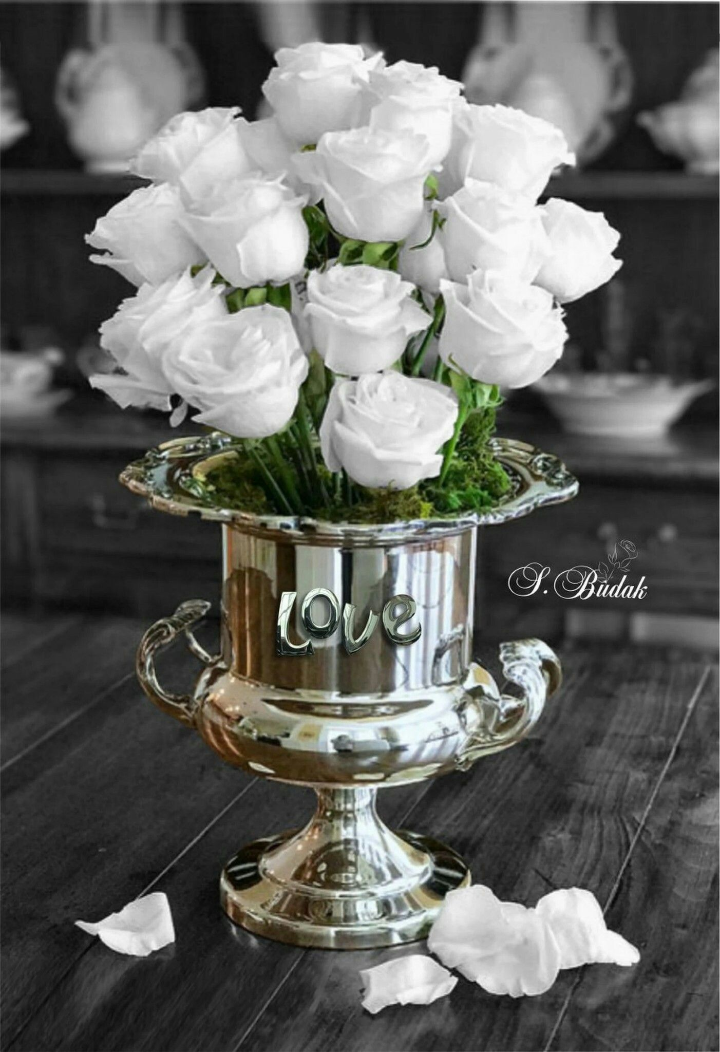 Pin By Naomi Lucier On A Splash Of Color This That Pinterest