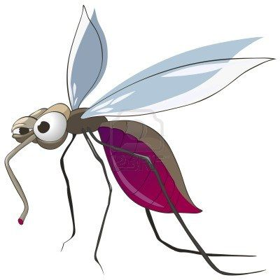 Cartoon Character Mosquito Bugs Drawing Mosquito Cartoon Characters