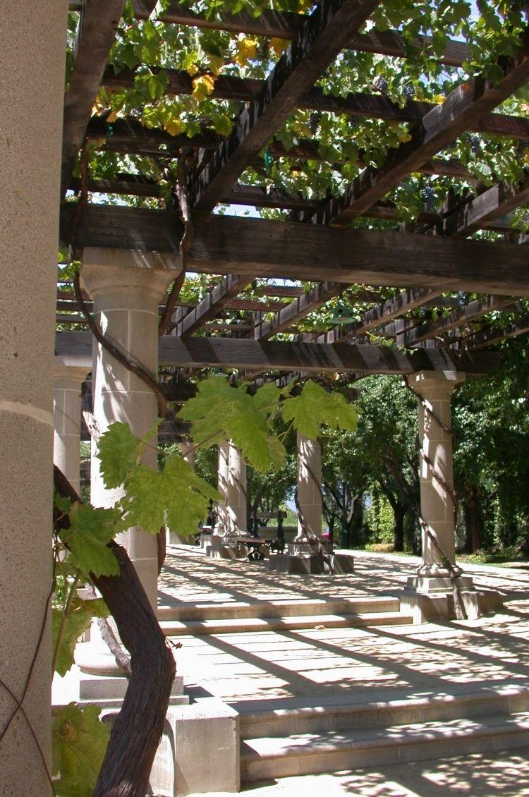 45 Ideen Fur Pergola Im Garten Guter Sonnen Und Sichtschutz Aus