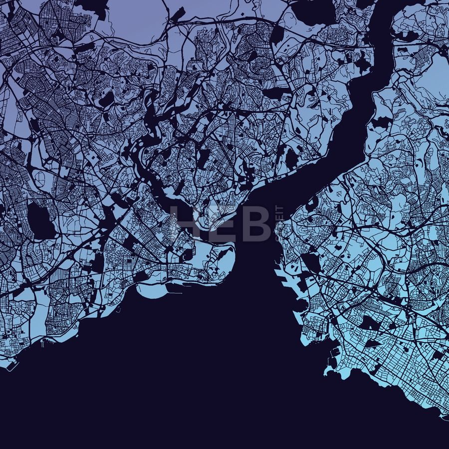 Download from $0.99, Istanbul Two-Tone Map Artprint, Vector Outline Version, ready for color change...,  #3d #administrative #aerial #asia #background #black #blue #border #city #colors #country #cut #design #district #europe #graphic #house #icon #illustration #image #isolated #Istanbul #land #map #marmara #National #office #outline #picture #satellite #sea #shape #silhouette #street #symbol #teo #tourism #travel #turkey #urban #vacation #vector #view #white