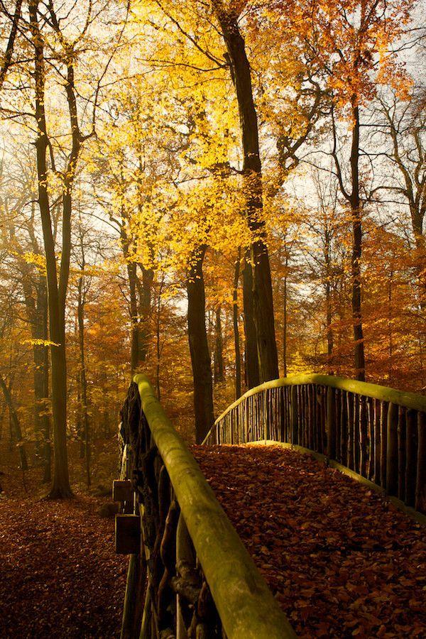Autumn Bridge, Herbst, Germany
