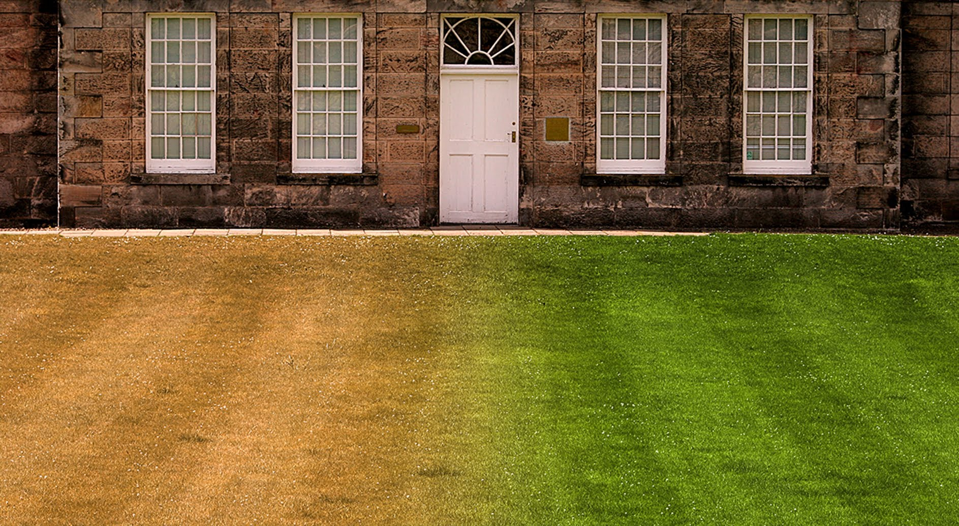 Photoshop Quick Tip How To Make Burnt Out Brown Grass Into A