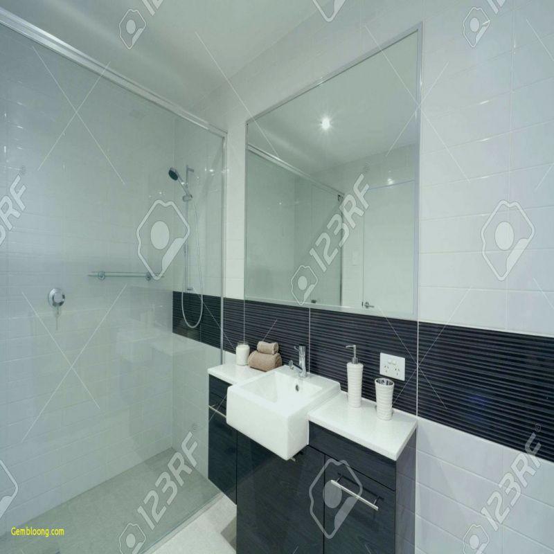 20 Modele Carrelage Petite Salle De Bain 2018 Glass Shower