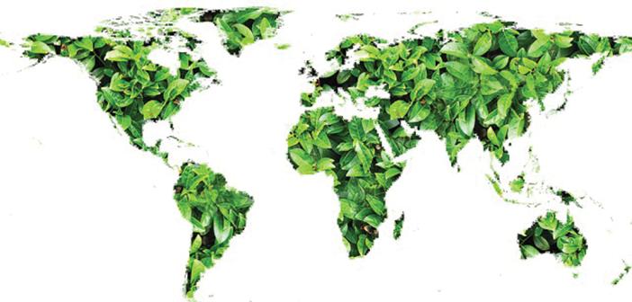 Il futuro della Terra è oggi Energie rinnovabili, Verde