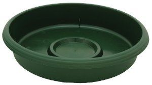 Akro Mils Spn1200b71 Deep Saucer For 12 Inch Panterra Pot Green 11 Inch By Akro Mils 8 11 Measures 12 In Container Plants Saucer Water Reservoir
