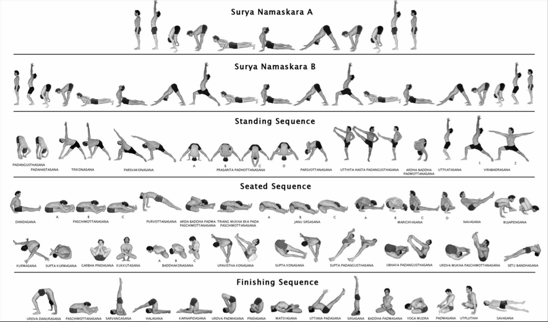 Vinyasa Flow Yoga Sequence Includes A Link To Pdf Called For Digestion Yogi David Kyle What Is Rocket Yogi Vinyasa Flow Yoga Jpg Vinyasa Flow Yoga Ashtanga Vinyasa Yoga Ashtanga Yoga
