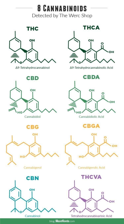 Photo of Delta-9-tetrahydrocannabinol (THC), delta-9-tetrahydrocannabinolic acid (THCA), …