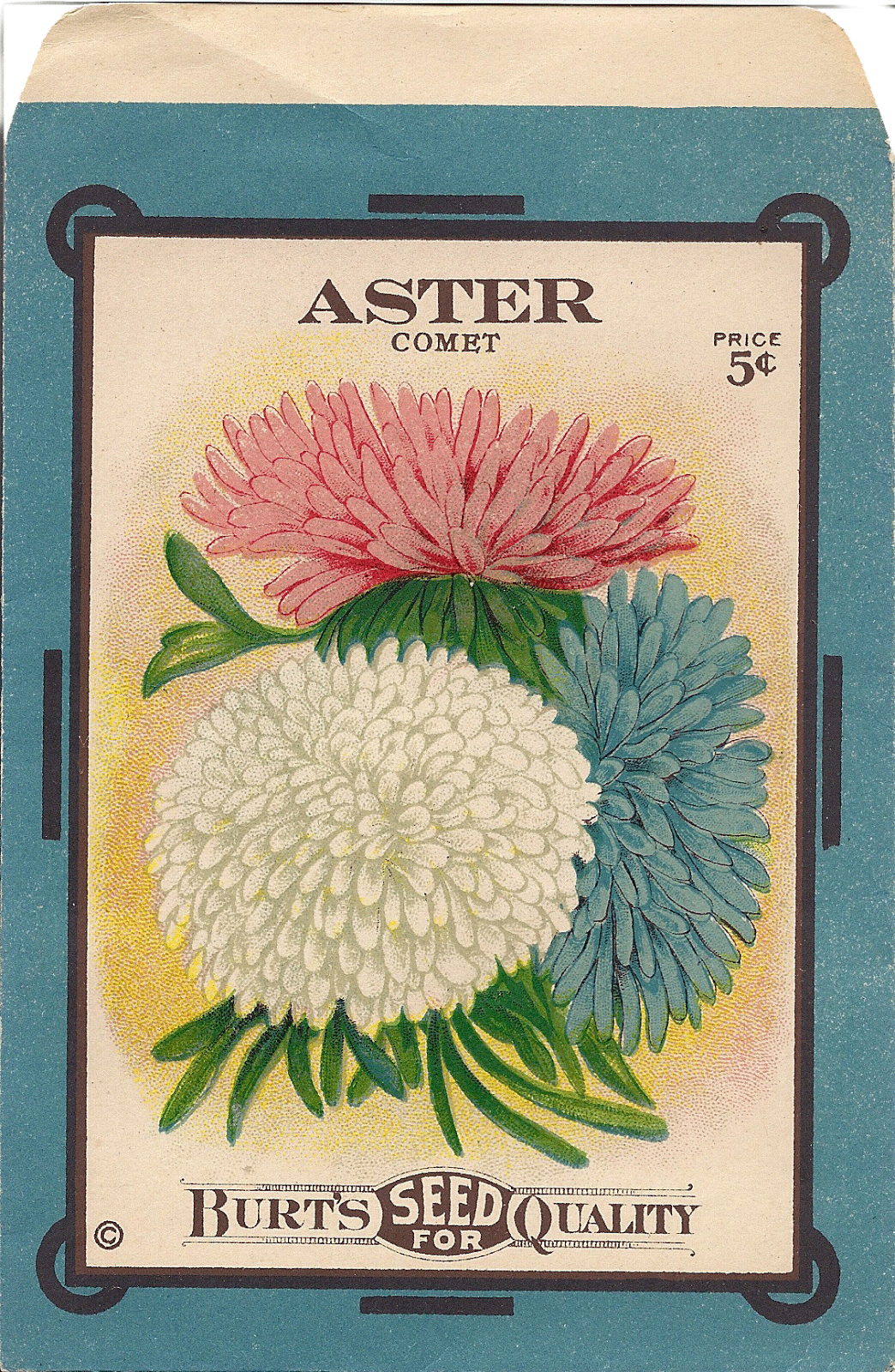Free Printable Antique Aster Seed Packet Vintage Seed Packets Seed Packets Flower Seeds Packets