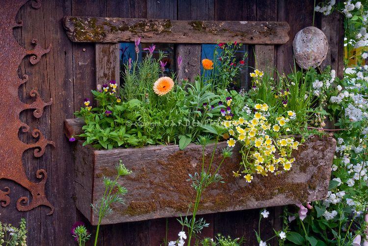 Windowbox-Garden