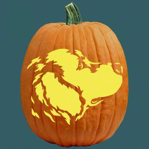 Golden Retriever Carved Pumpkin I Like This One Better Than The
