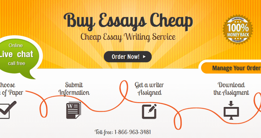 Order custom essay cheap
