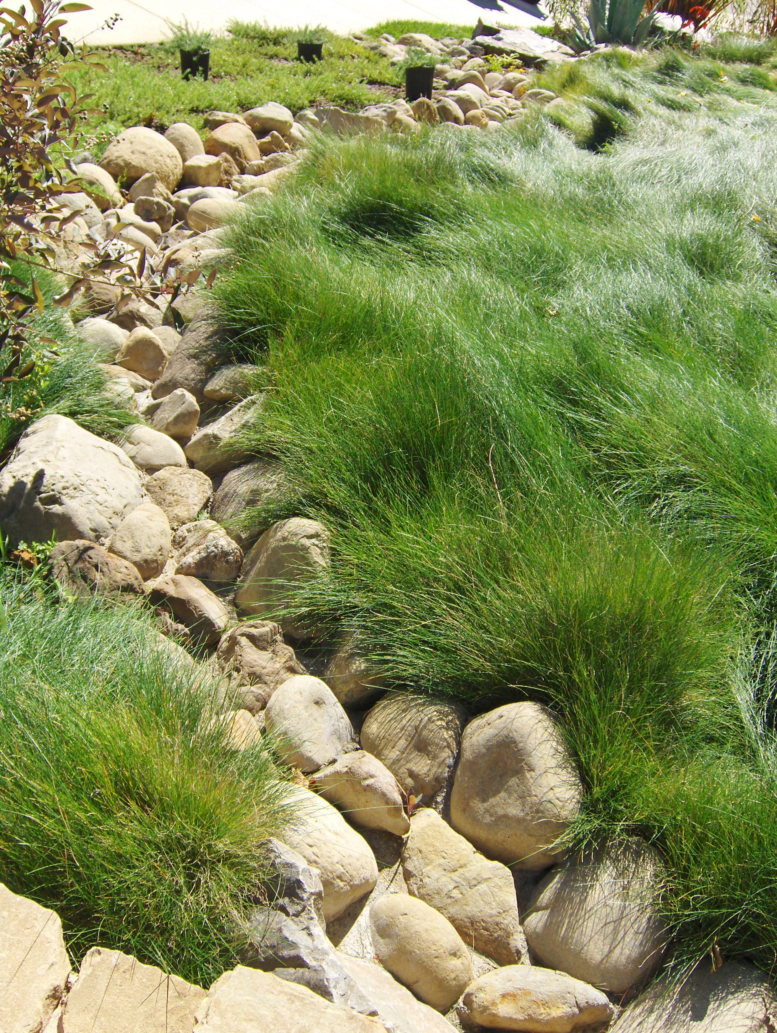 Dry River Bed Outdoor water features, Landscaping on a