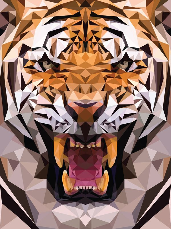 Tiger in Triangles, if you view this picture as a small thumbnail, it really looks like a tiger