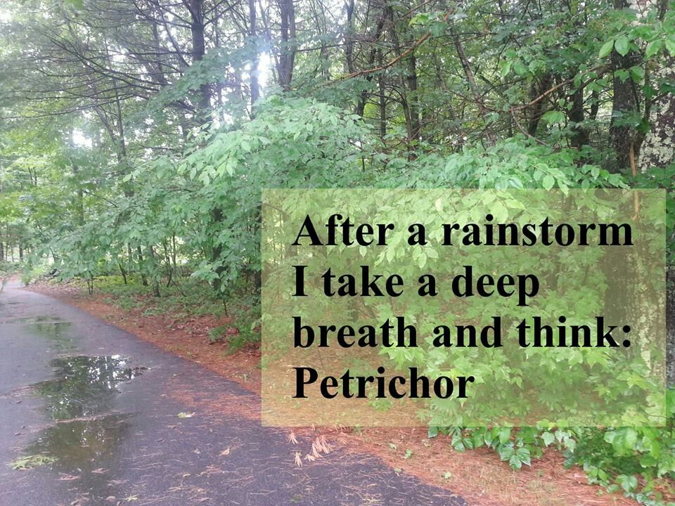 Petrichor :-) | Doctor Who | Pinterest | Doctor Who, Geek ...