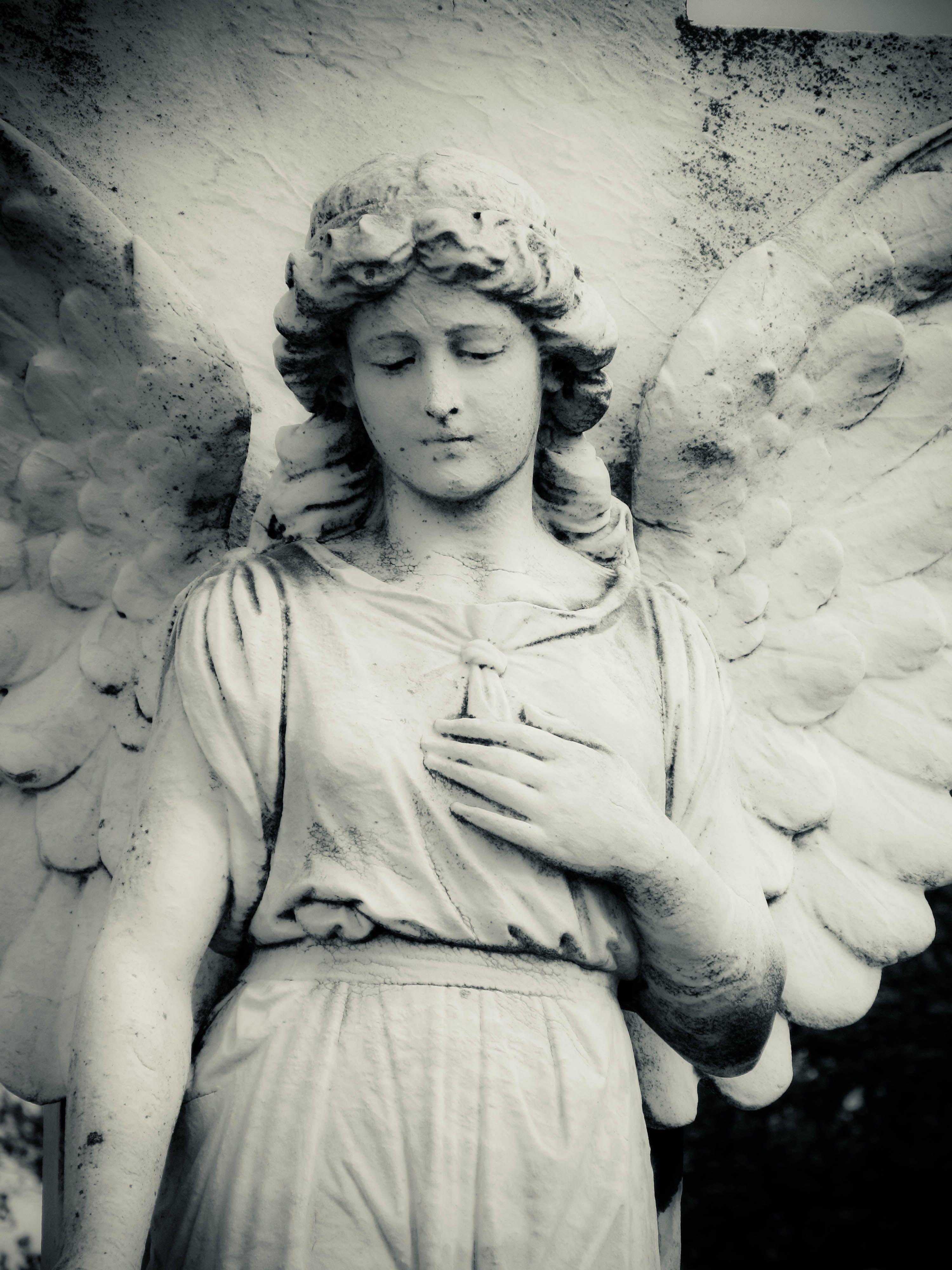 привозить умерших фото плачущего ангела ингредиенты нарежьте