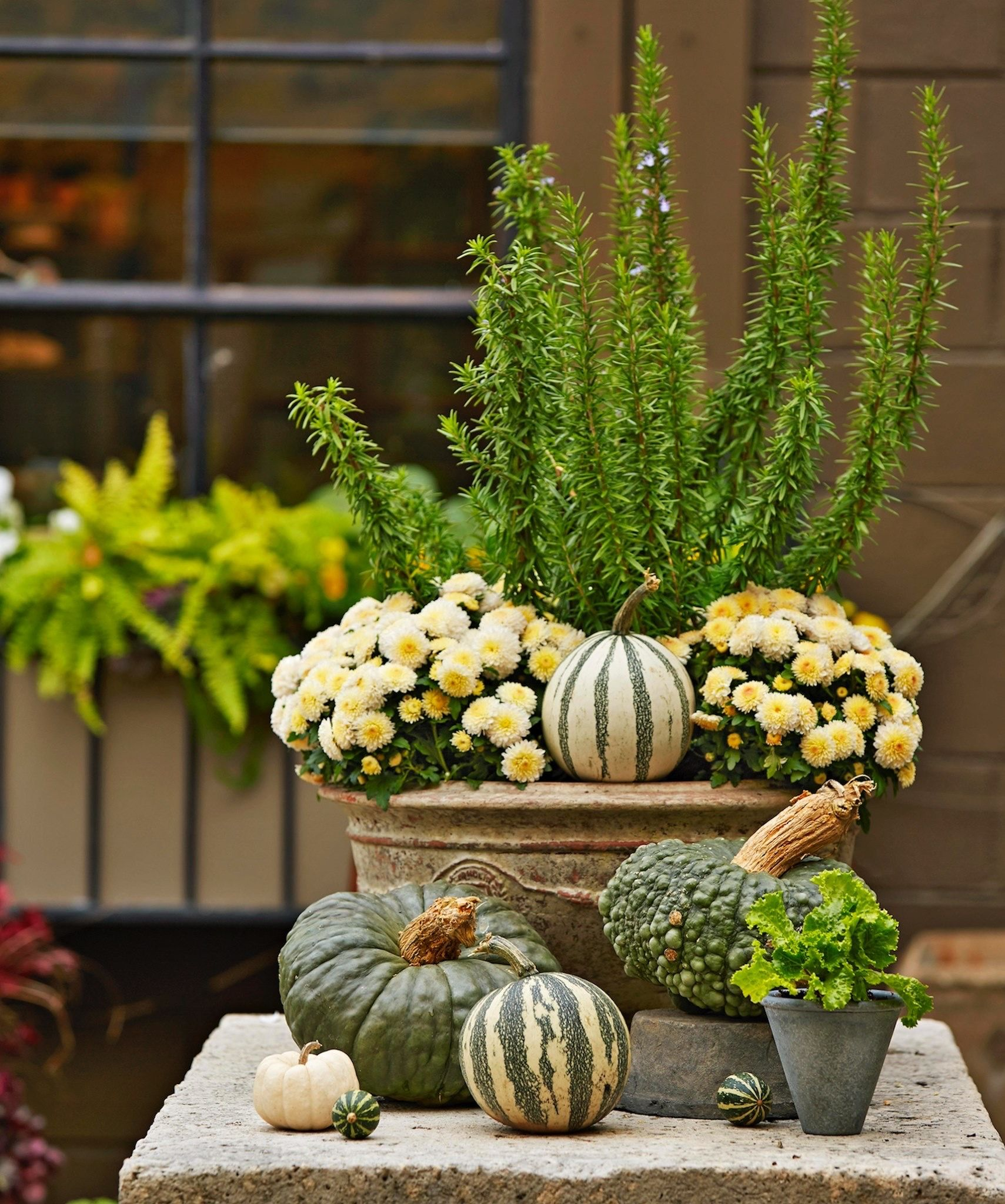 Pin By Sherie Smith On Fall Inside