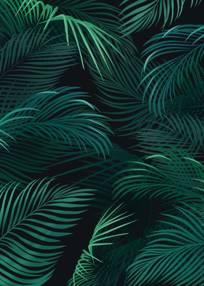 'Palm leaves on dark background' Poster Print by Jace Anderson | Displate