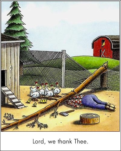 Cartoons Turkey Funny Side Far