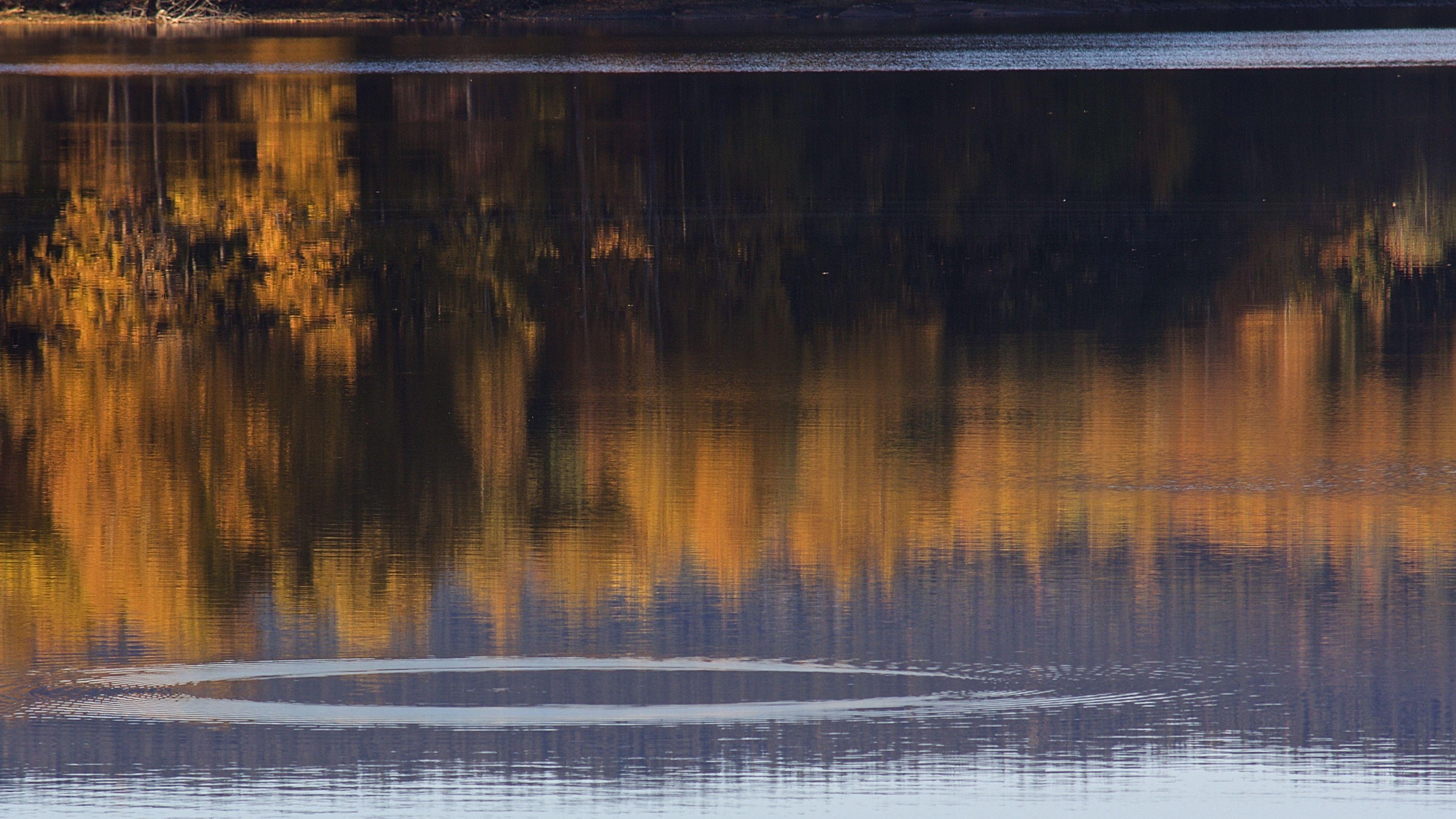 "From ""The Poetry of Water"". Åse Margrethe Hansen, 2016"