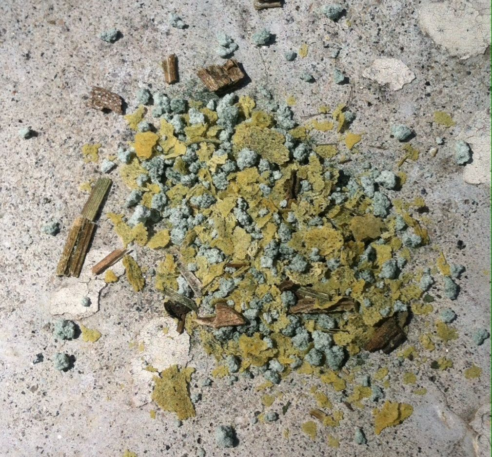 Healthy Pet Herbal Pet Health Holistic Dog Cat Powdered Herbal
