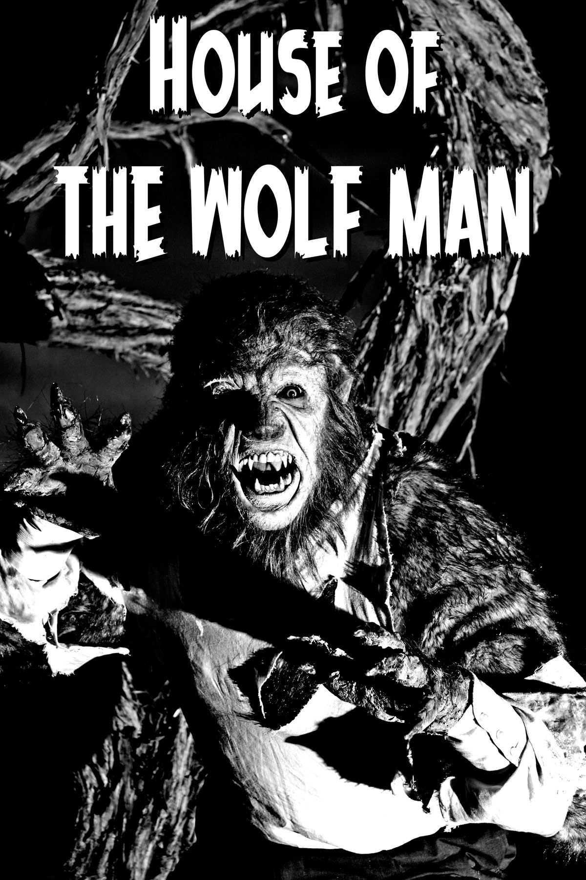 Michael May S Adventureblog July 2009 Horror Monsters Wolfman Horror Movie Posters
