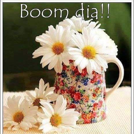 Bom Dia Gente Amada Excelente Quarta Feira Para Nos Daisy