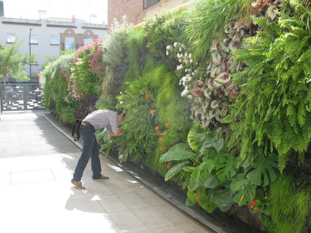 Jardines buscar con google proyectos que intentar vertical garden plants verticle garden - Jardin verticale ...