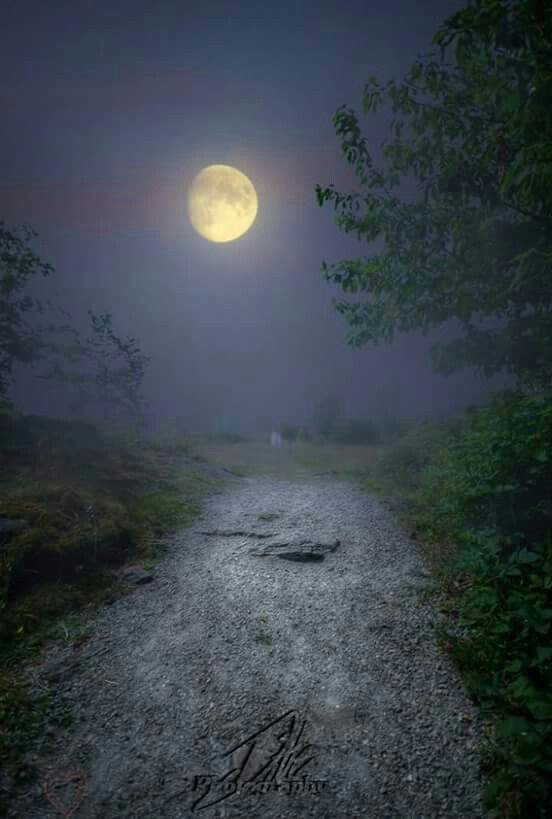 Pin By Shirlee Mapes On Night Sky Beautiful Moon Moon Photography Magical Sky