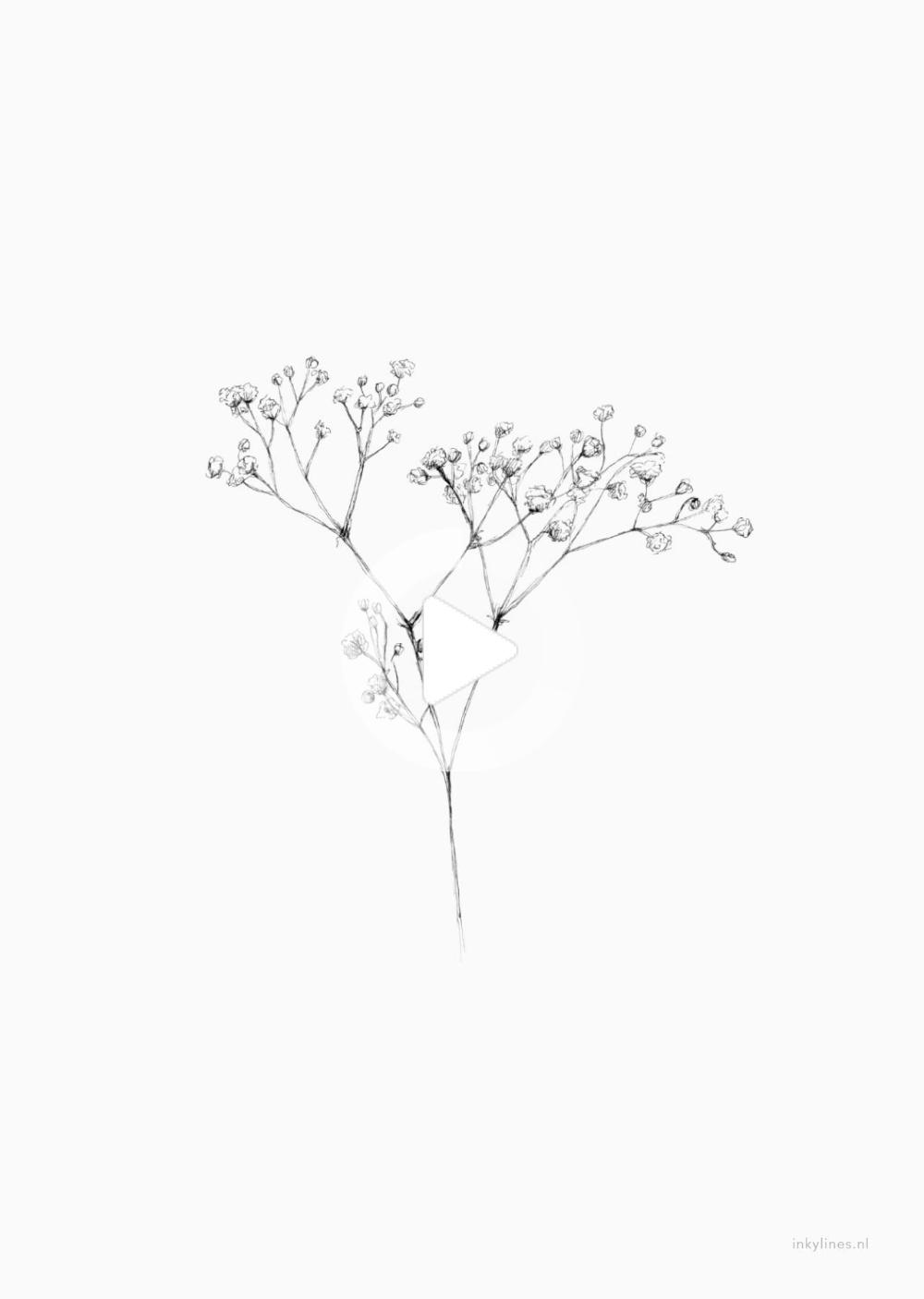 Pin On Flower Illustration
