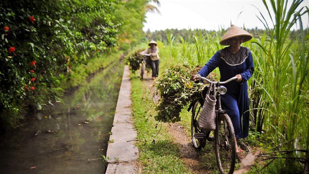 ADB to Help Indonesia Achieve Food Security with 600