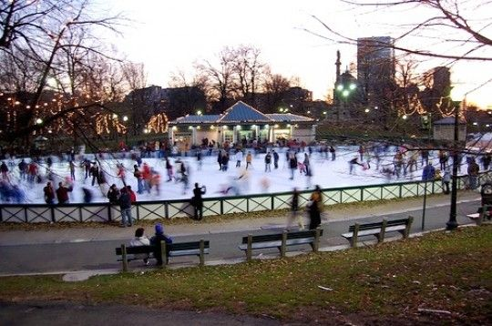 Frog Pond Boston Common | Things to Do in Boston this November | Her Campus