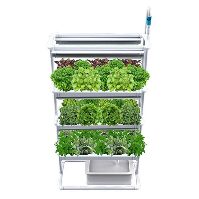 Amazon Com Vertical Nft Hydroponics Growing System 400 x 300