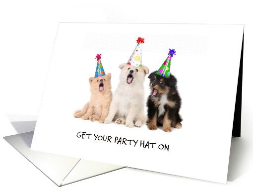 Cute puppies in party hats party invitation card Invitations - invitation to a party