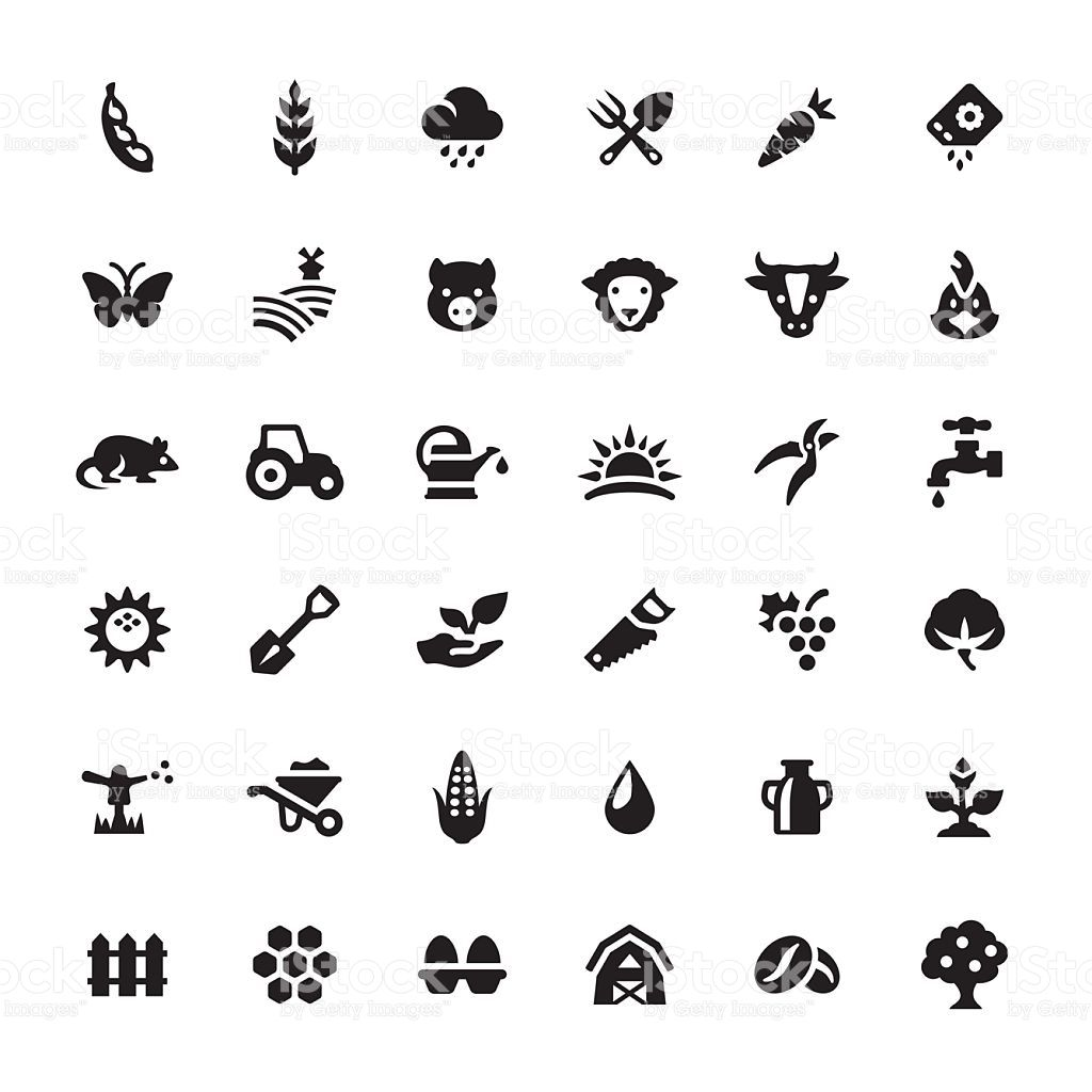 Pin On Grico Icons